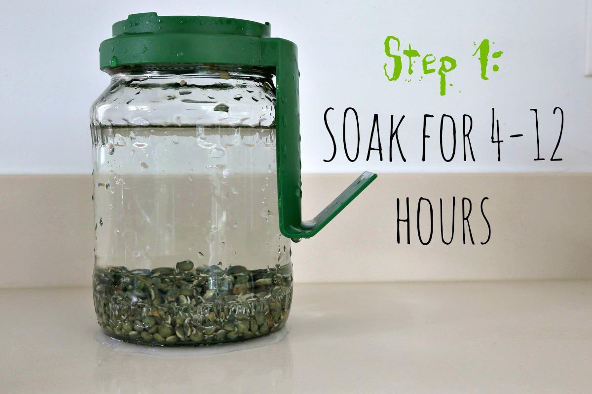 Sprouting - soak