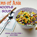 Dreams of Asia Noodle Soup
